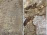 Osning-Sandstein