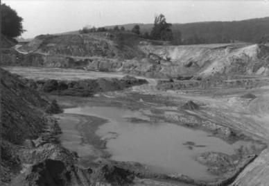 Voßegge 1981