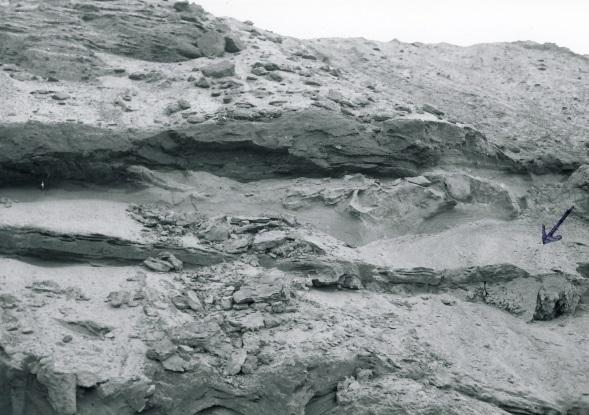 Karbonatzementierte Sandkörper