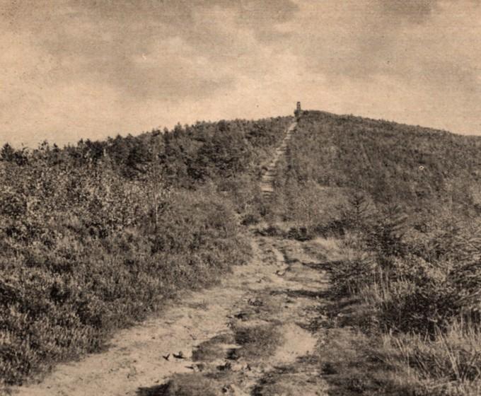Blick vom Bergrücken des Dörenbergs Richtung östlichem Aussichtsturm