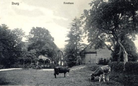 Postkarte, um 1900